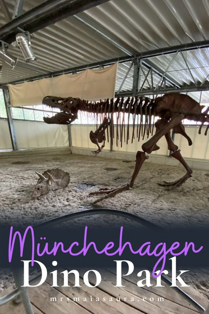 Münchehagen Dinosaur Park: Germany's Jurassic Park, with more than 300 REAL dinosaur tracks. What you need to know before you go (and why you should).
