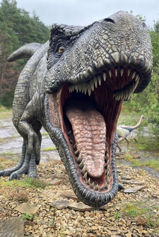 Germany's real Jurassic Park: Life-sized T-Rex at Münchehagen Dinosaur Park, the best place to see real dinosaur tracks in Germany