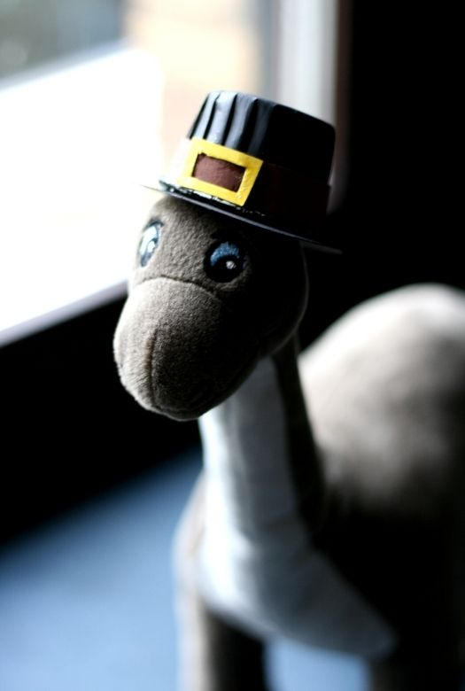 DInosaur Pilgrims - a simple Thanksgiving craft - here with a picture of a toy Brontosaurus wearing a Pilgrim hat