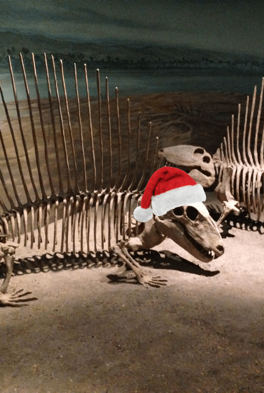 Dimetrodon fossil wearing a Santa hat - great dinosaur gifts from your favourite museum