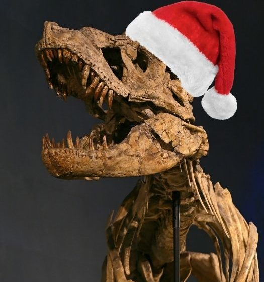 Great dinosaur gifts from your favourite Museum (Museum of Natural History), with image of a fossilised T-Rex skeleton wearing a red Santa hat