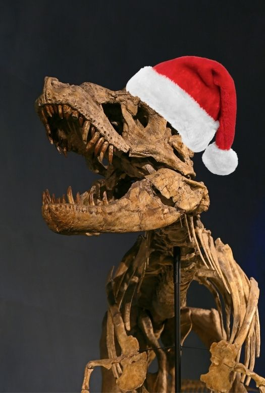 Great dinosaur gifts from your favourite museum (that support the museum too)