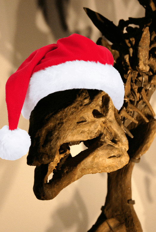 Stegosaurus fossil wearing a Santa hat - great dinosaur gifts from your favourite museum