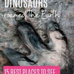 Where dinosaurs roamed the Earth: 15 best places to see real dinosaur tracks and footprints: Pin with image of a single Theropod ichnite