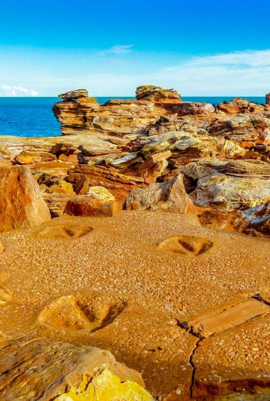 One of the best places to see real dinosaur tracks has only recently become known to science: the Dampier Peninsula, near Broome in Australia, where the larges sauropod footprints have been found