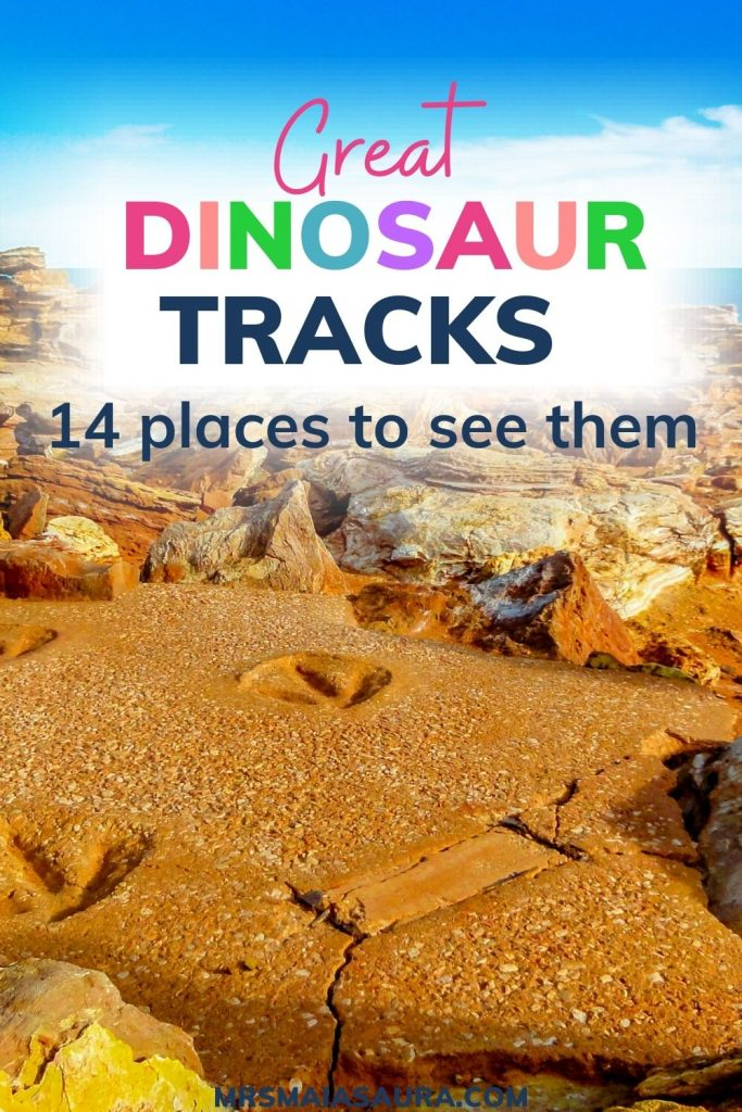 Pin: Great dinosaur tracks: 14 best places to see dinosaur footprints - with pictures of tracks on the beach near Broome, Australia
