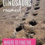 Pin: Where dinosaur roamed: Where to find the best dinosaur tracks, with image of sauropod tracks