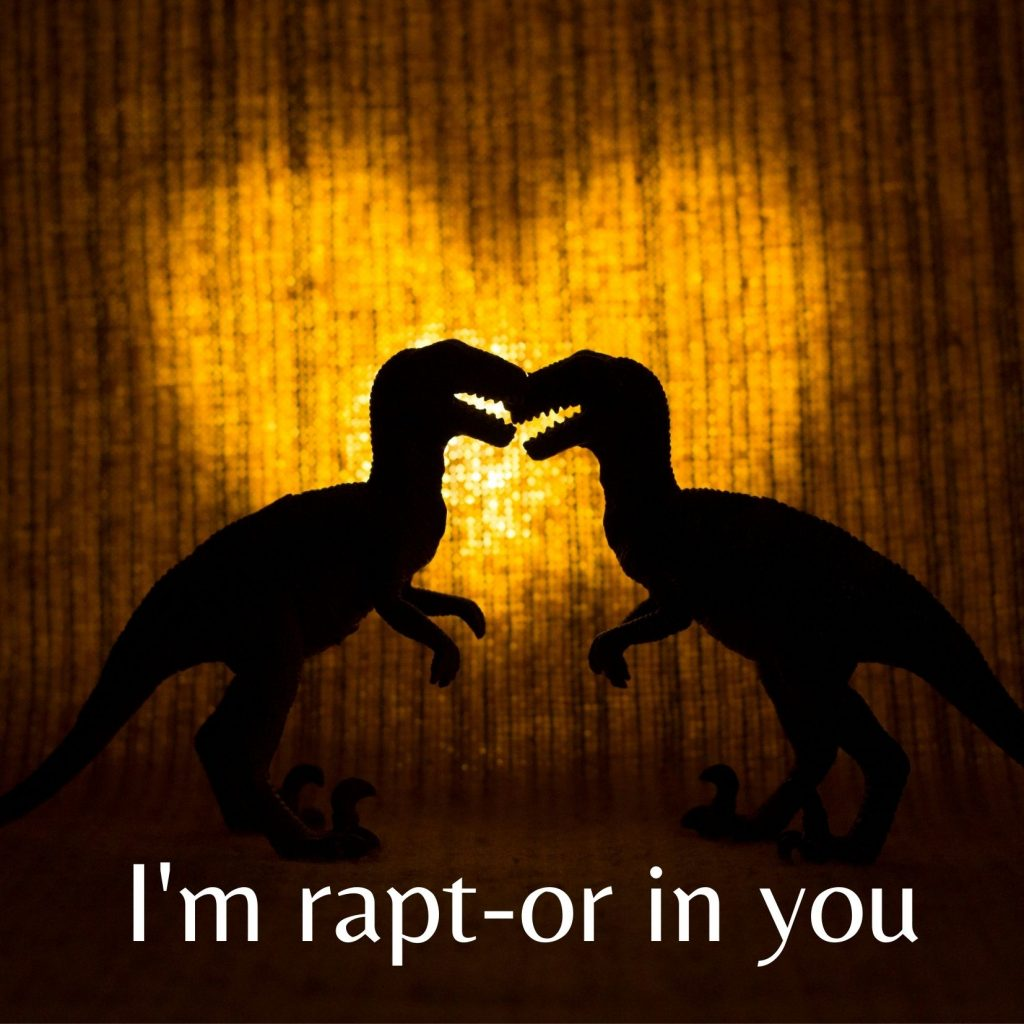 "Two raptor silhouettes, with a love heart light, clearly rapt in one another and the message ""I'm rapt-or in you"""