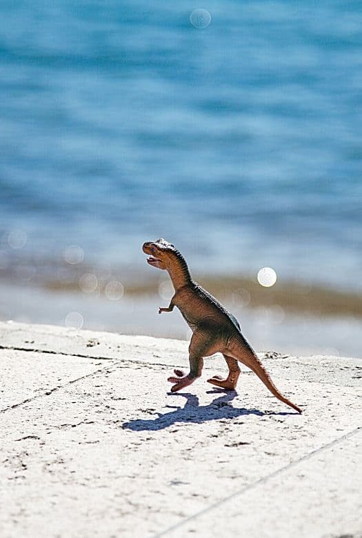 The ultimate summer bucket list for dinosaur fans: 11 simple dinosaur activities for a fun-filled, rip-roaring summer with image of a toy dinosaur at a beach
